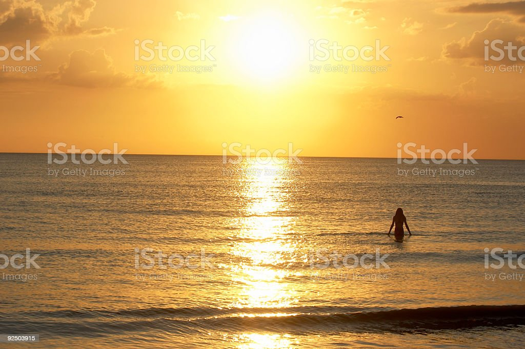 Sunset Swimmer royalty-free stock photo