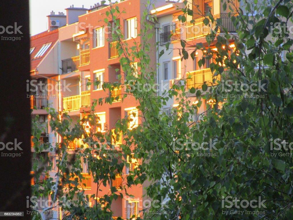 일몰-일몰 동안 고층 빌딩의 창에 태양 royalty-free 스톡 사진