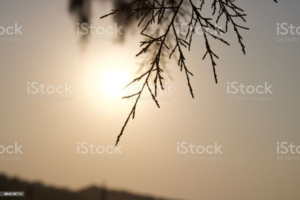 Sunset through objects by the sea royalty-free stock photo