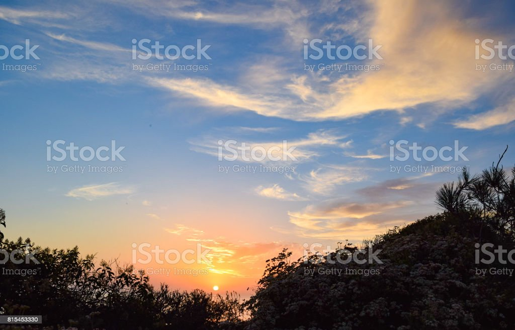 Sunset Through the Brush at Torrey Pines State Reserve in San Diego stock photo