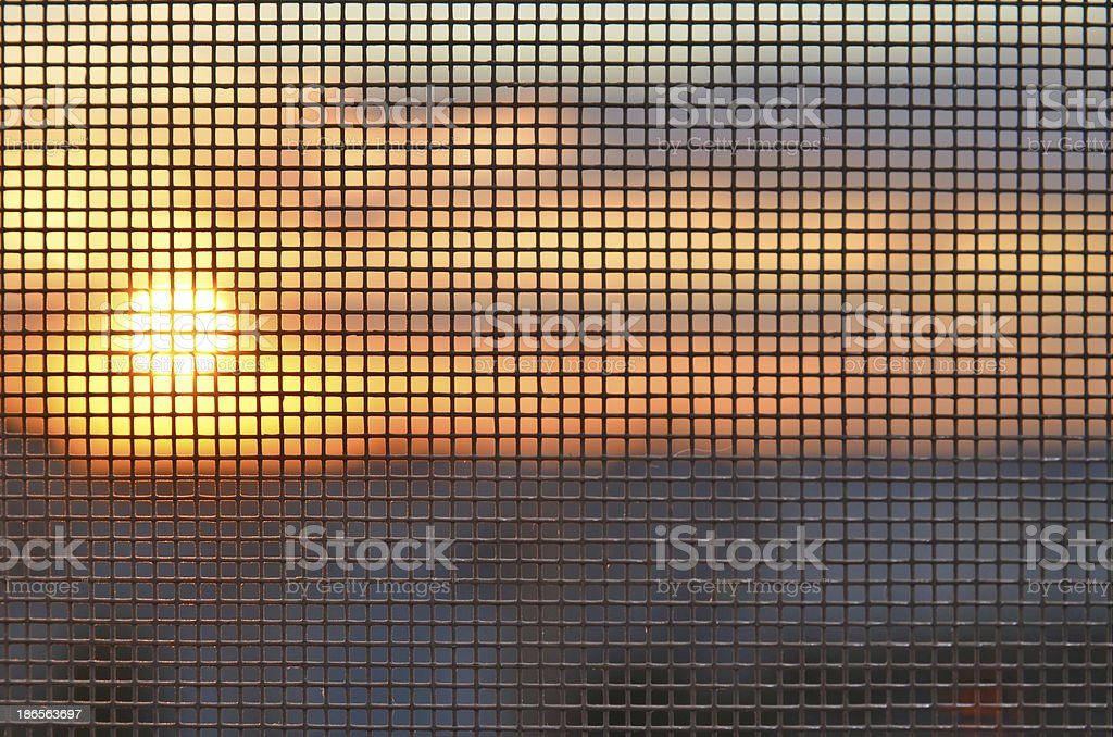 Sunset through the mosquito screen stock photo