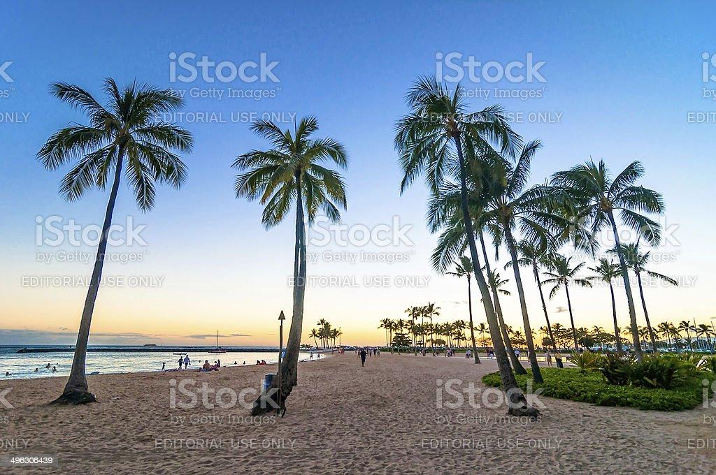 sunset time in Waikiki beach, Honolulu stock photo