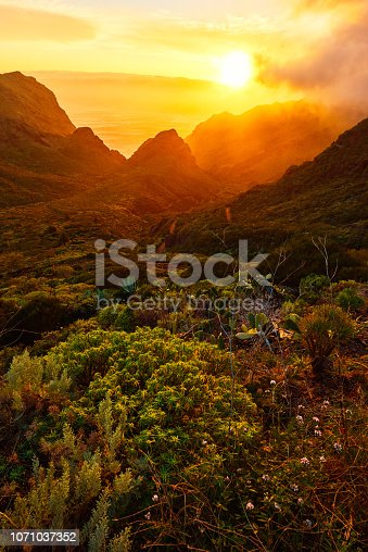 vertical landscape of Tenerife mountains view in spring day.sunset time.