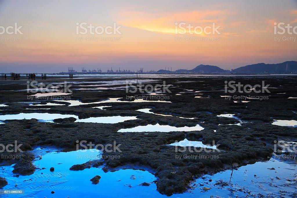 Sunset wetland at PAK LAI foto stock royalty-free
