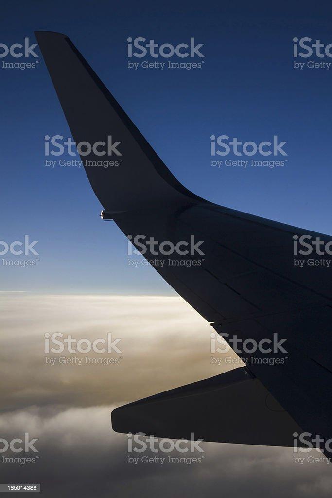 Sunset wing stock photo