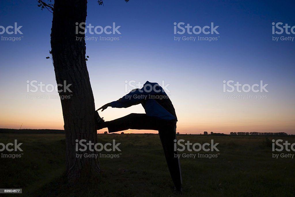 Sunset with a tree royalty-free stock photo