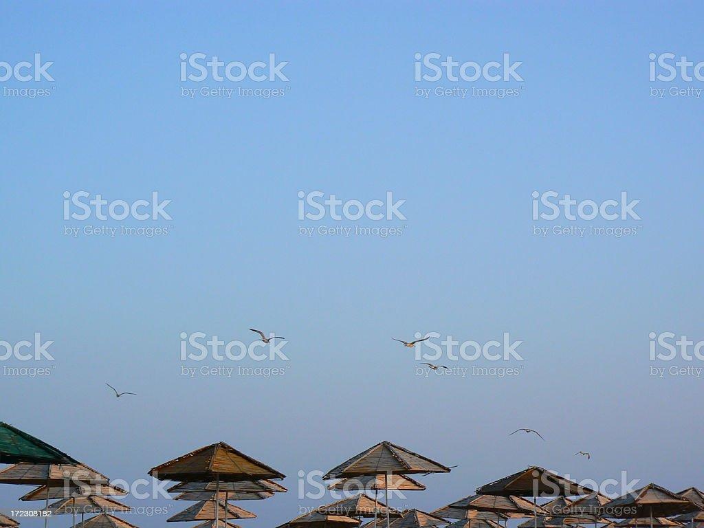 sunset with beach umbrellas stock photo