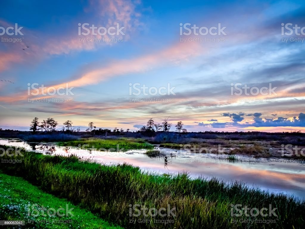 sunset with pink clouds in the swamp river stock photo