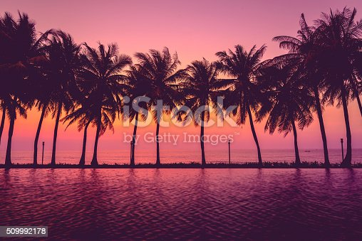 Sunset with silhouette Palm trees, Pastel Style