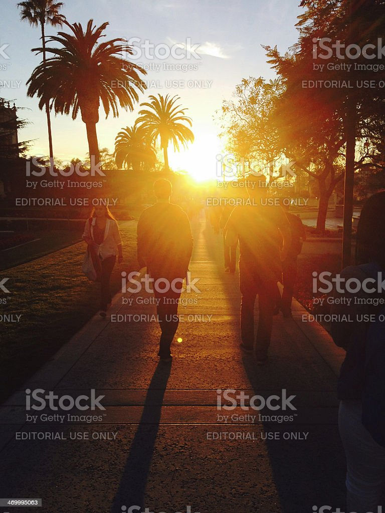 Sunset with Students at University with Lens Flare stock photo