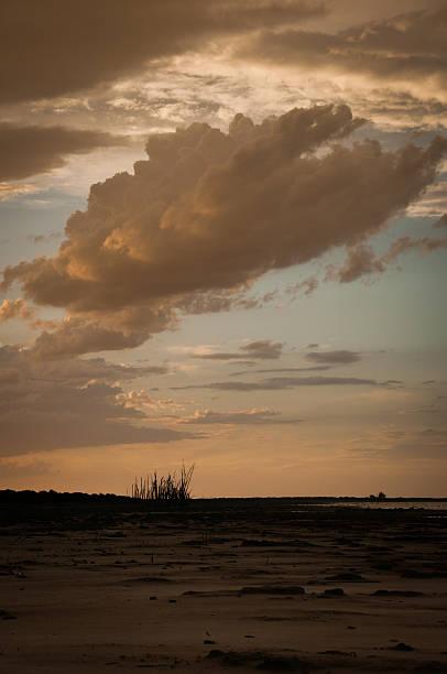 Puesta de sol con nubes treees y en la playa - foto de stock