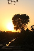 Sunsets in the village of Punjab, Pakistan.