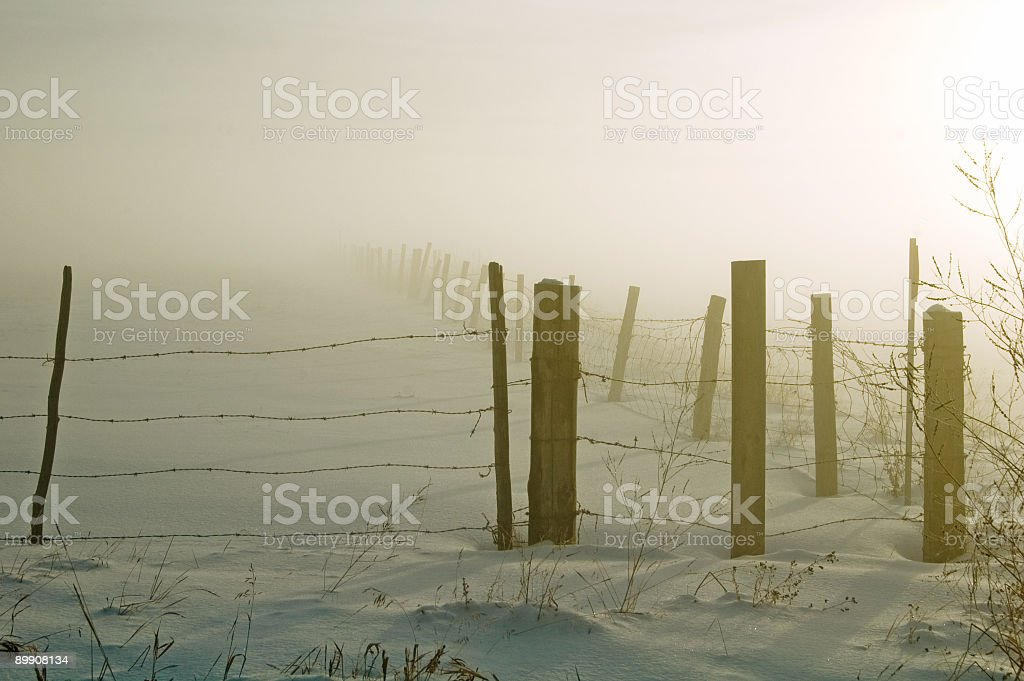 Sunset,Snow,Fog,and Fence Line royalty-free stock photo