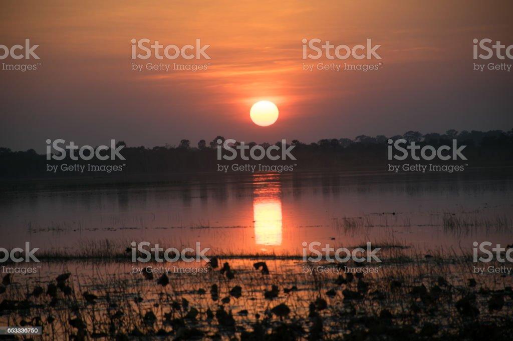 sunshine abckground stock photo