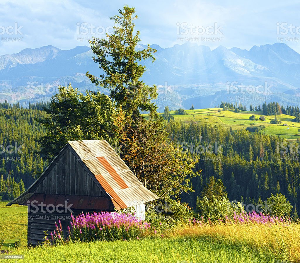 Sunshine above summer mountain country field royalty-free stock photo