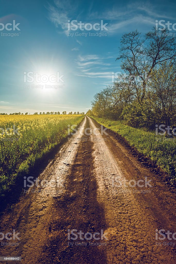 Sunshine and rural road in Bakota stock photo