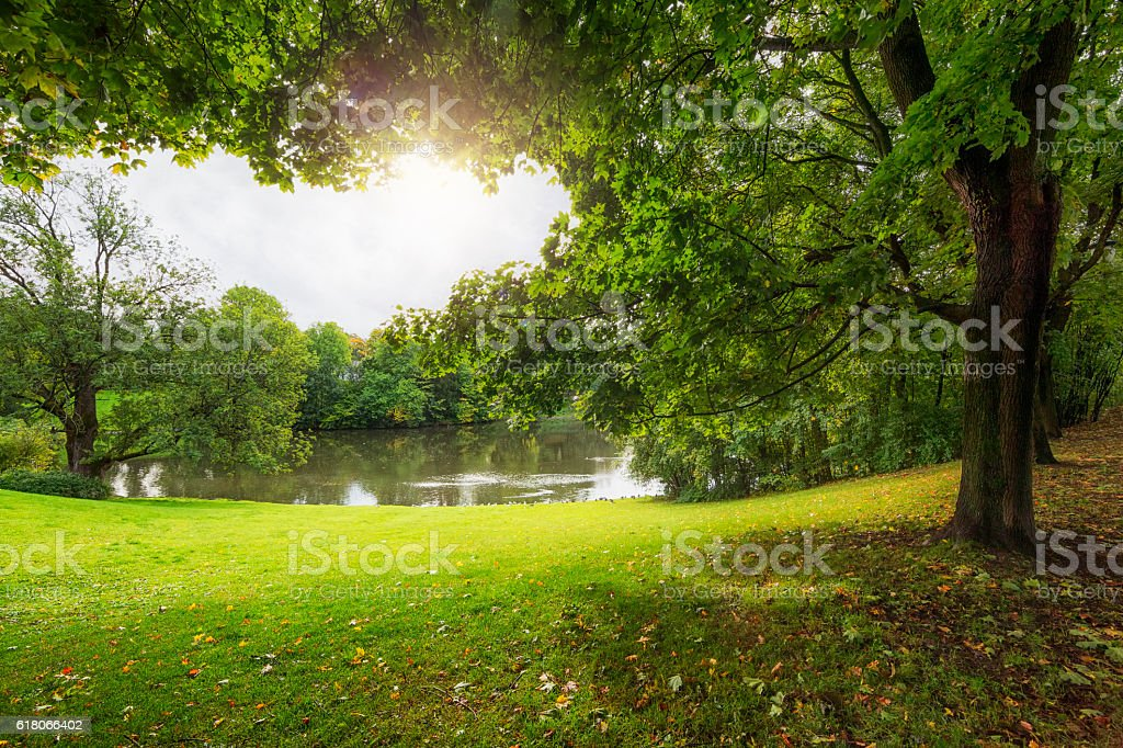 Sunshine and Trees in Vigeland Park, Oslo, Norway stock photo