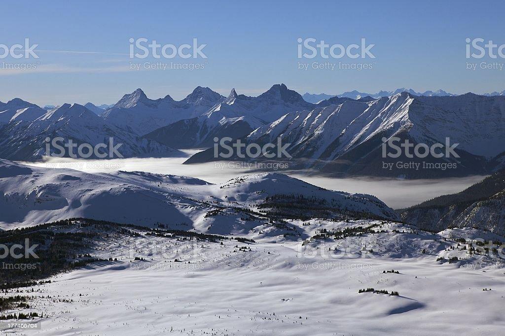 Sunshine Meadows Banff National Park royalty-free stock photo