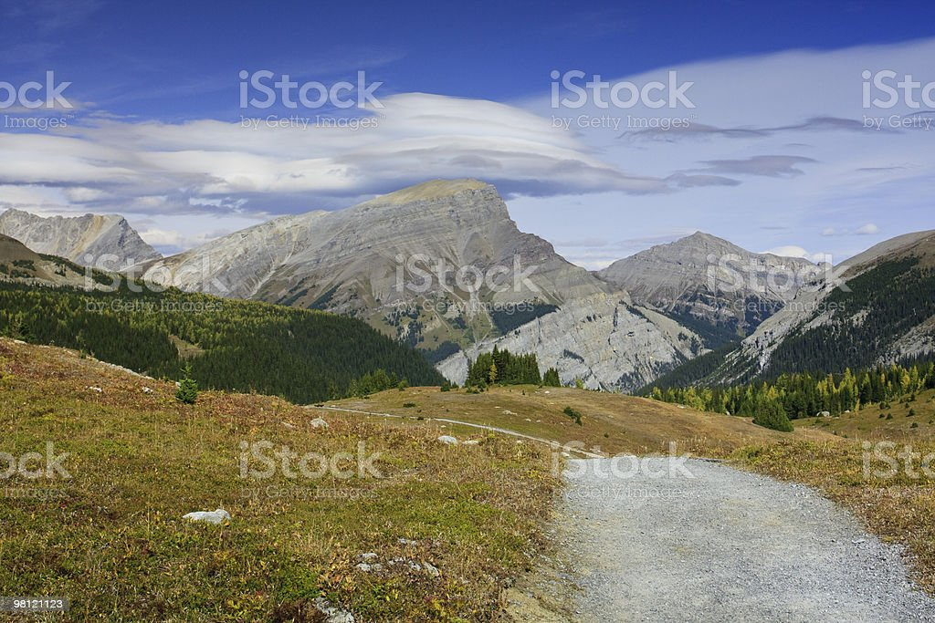 Sunshine Meadows trail royalty-free stock photo