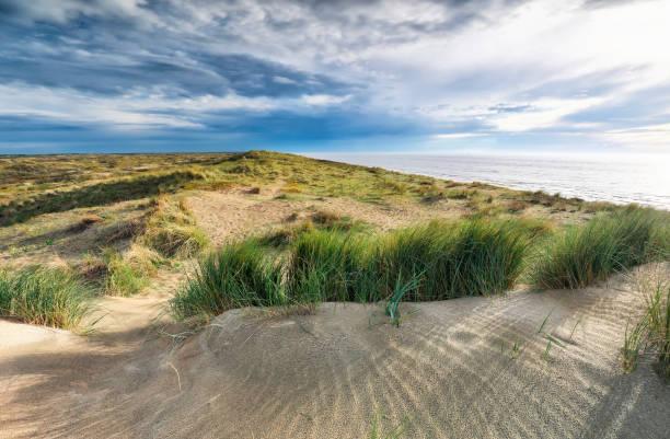 zonneschijn over zandduin door Noordzeekust foto