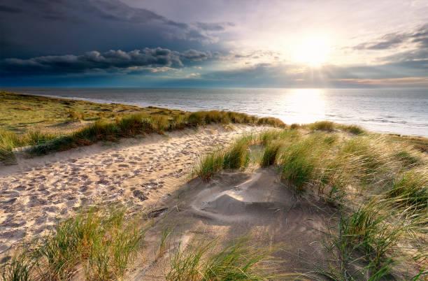 Sunshine over zand pad op Duin naar Noordzeestrand foto