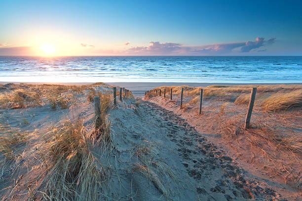 sunshine over the sand path to North sea coast foto