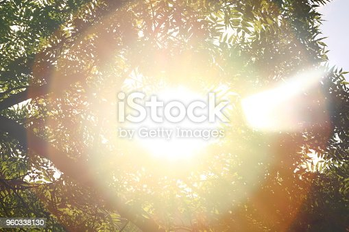 istock Sunshine. Sky. Bright sun in the sky. Sunlight circles. A solar circle, a bright solar flare, rays in green branches, rays in green trees. Sunset. Sun in the garden. 960338130