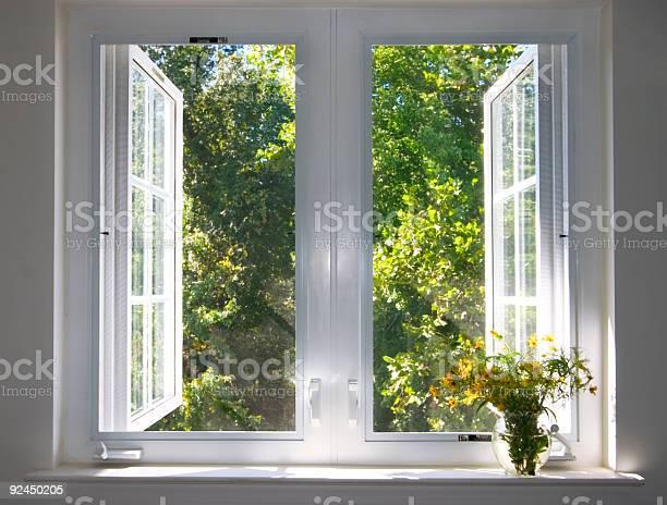 Photo of sunsplashed window
