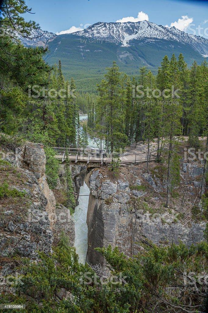 Sunwapta Falls in Jasper National Park stock photo