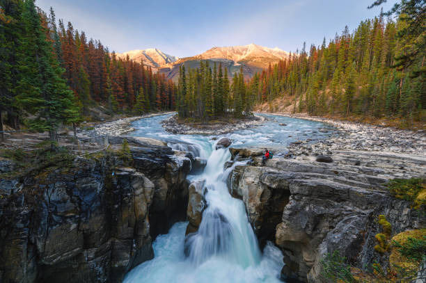 Sunwapta Falls with traveler sitting on rock in autumn forest at sunset stock photo