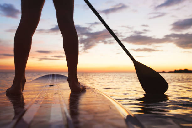 sup, standup paddle on the beach at sunset stock photo