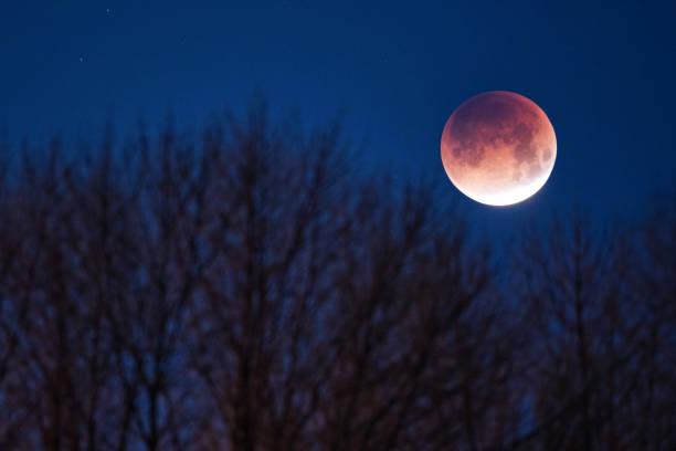 Super blue blood moon stock photo