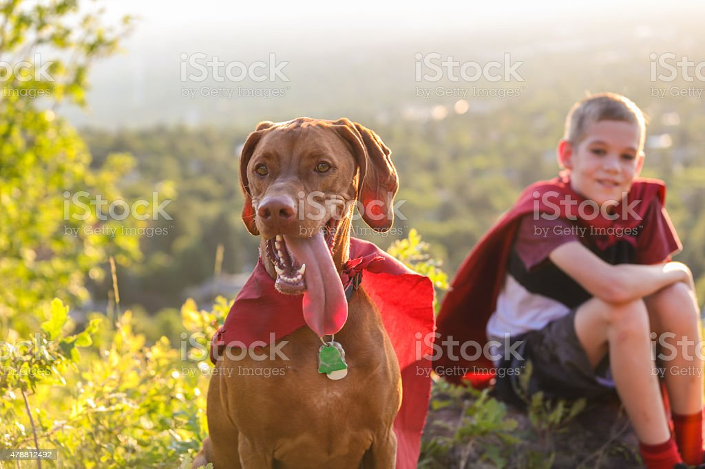 Vizsla dog standing proud with cape and young boy