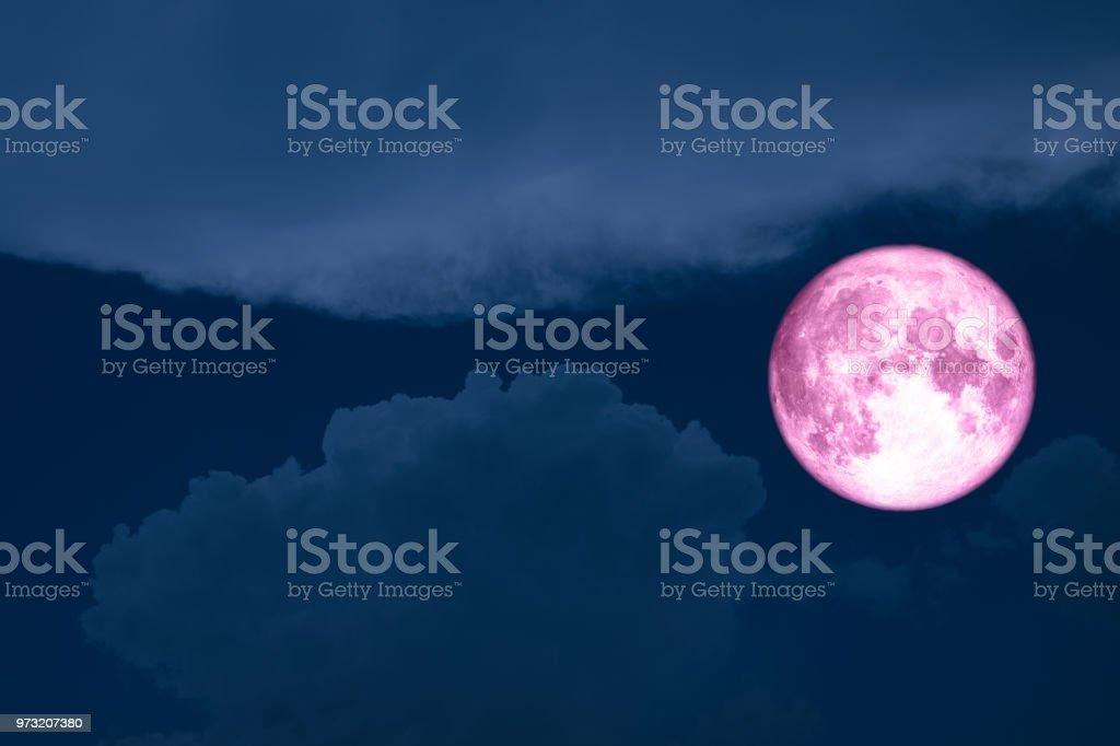 Super voll rosa Mond Silhouette Baum Wald Sterne am Himmel – Foto