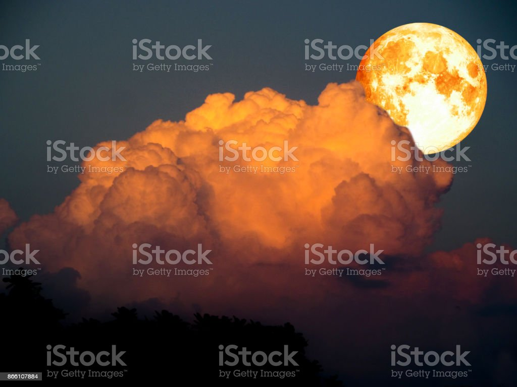 super moon and orange cloud over silhouette tree stock photo
