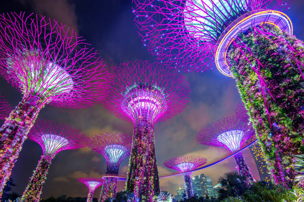 Super tree in Garden by the Bay, Singapore. stock photo