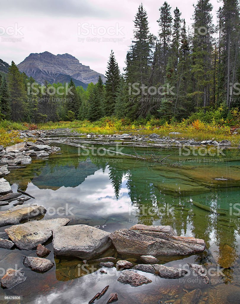 Superficial northern lake. royalty-free stock photo