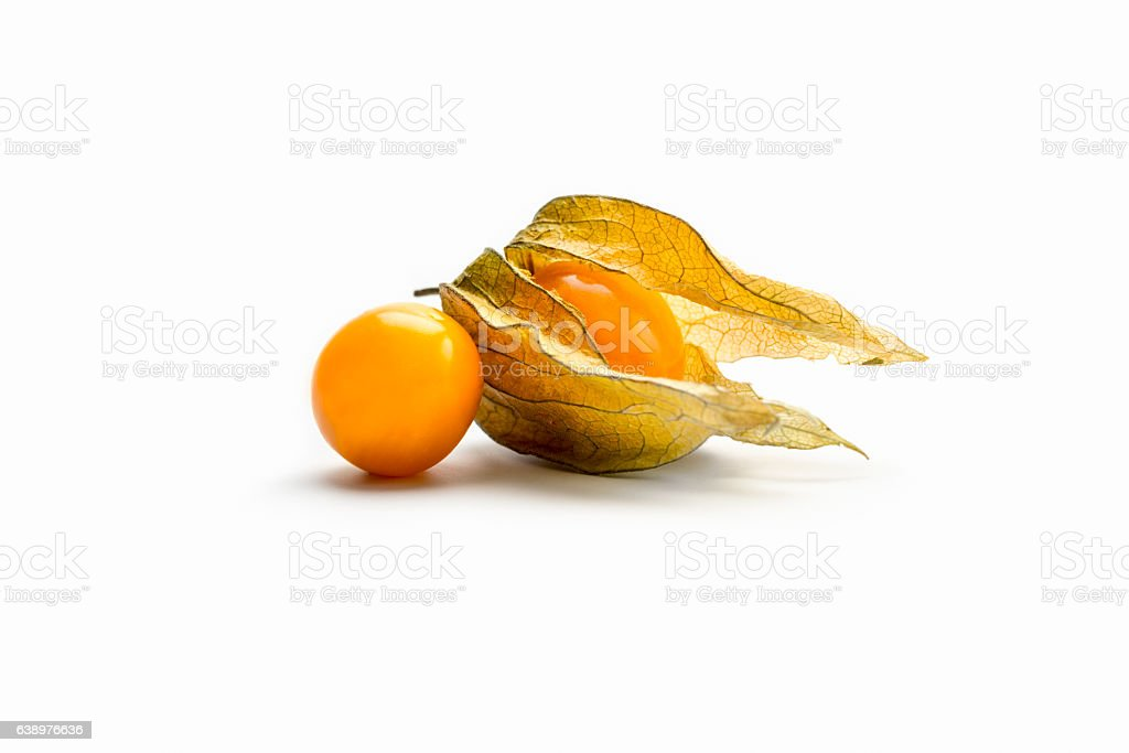Superfood, golden berry plant in two phases (Physalis peruviana) stock photo