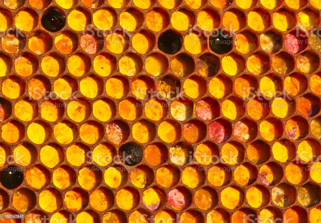 Supplies of meal as a mosaic royalty-free stock photo