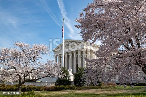 The US Supreme Court framed by cherry trees blooming in Washington DC