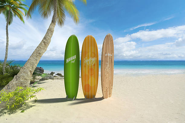 surfboards am strand - digital surfer stock-fotos und bilder