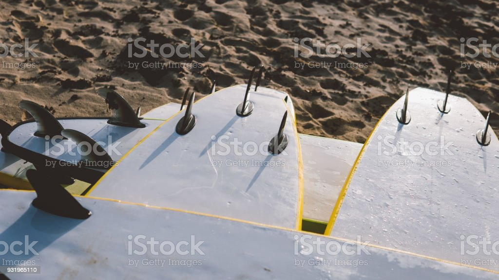 surf equipment in the shop. Surfing as a sport discipline all over the world stock photo