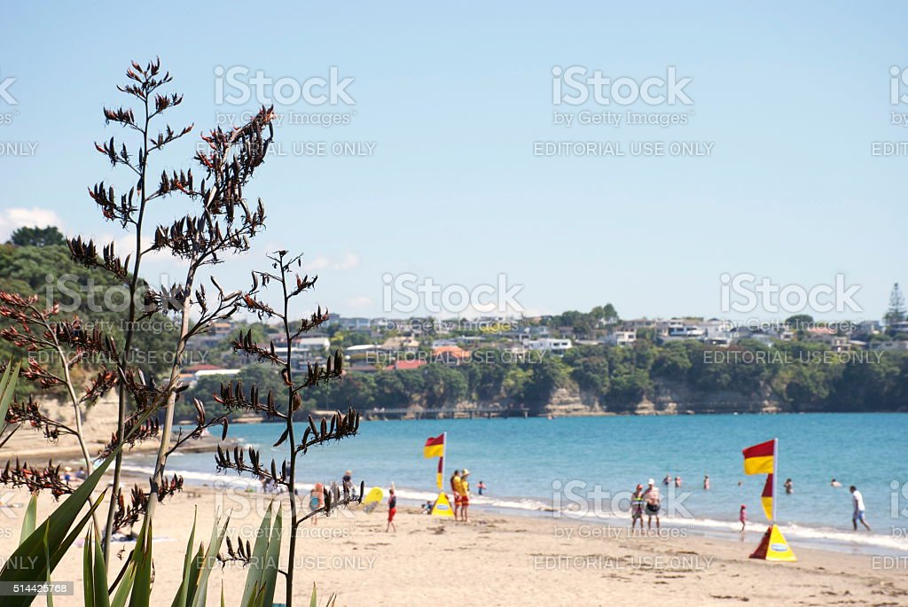 Surf Life Saving New Zealand Flags, Mairangi Bay, Auckland, New Zealand stock photo