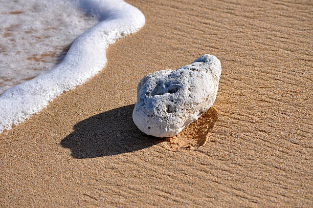 Surf Sand And Coral Rock