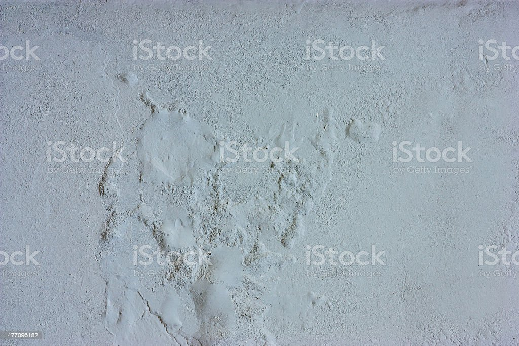 Surface of the cement wall stock photo
