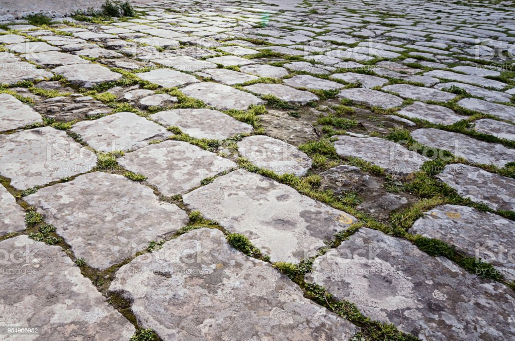 Surface of the old paving stone road with sprouted moss stock photo
