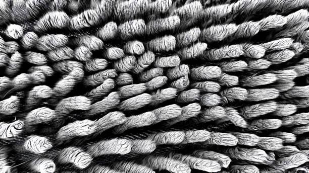 oberflächenstruktur von einem dunklen grauen tuch microfaser - rauhfaser stock-fotos und bilder