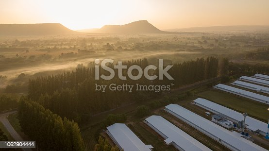 Farm land and ranch rural in Thailand with sunrise, fog and mountain background (photo by drone from hight view)