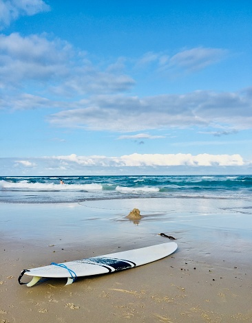 Surfboard with fins and leg rope laying in foreground on sand at famous place Byron Bay beach with pastel colors blue ocean waves pale sky with clouds