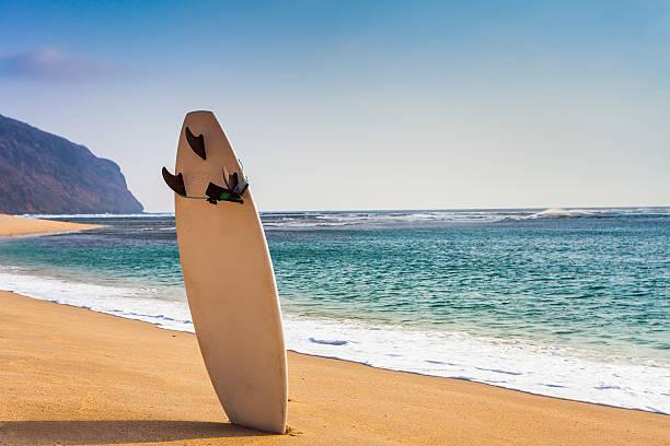 Tabla de surf en la playa de salvaje - foto de stock